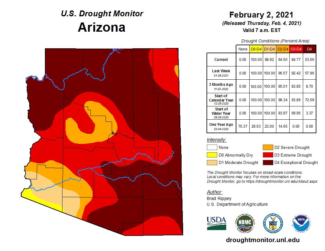 January 2021 Shot-term Drought Status Map